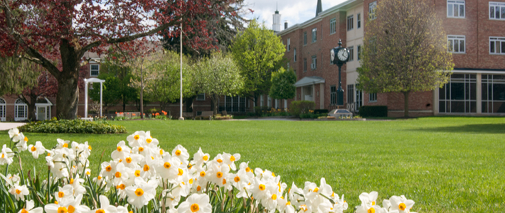 Spring Term Online with Cazenovia College